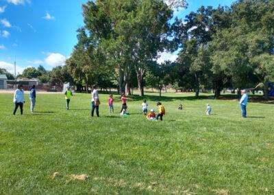 Summer Camp and Picnics
